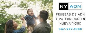 Prueba de paternidad NYC