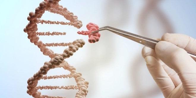 eficacia de las Pruebas de ADN